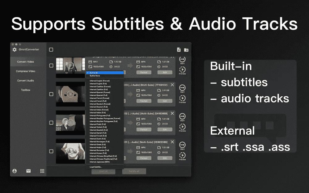 Embedded Subtitles and Audio Tracks